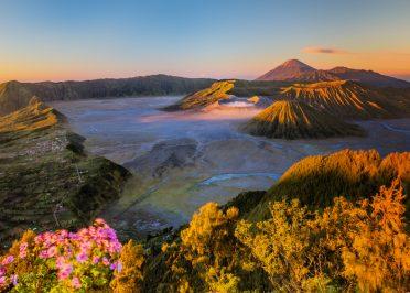 Passion Indonésie
