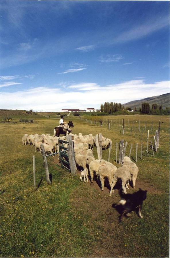 Ushuaia - El Calafate (vol)