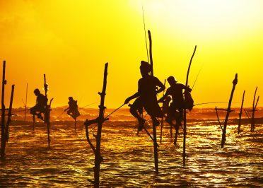 Passion Inde du Sud et Sri Lanka