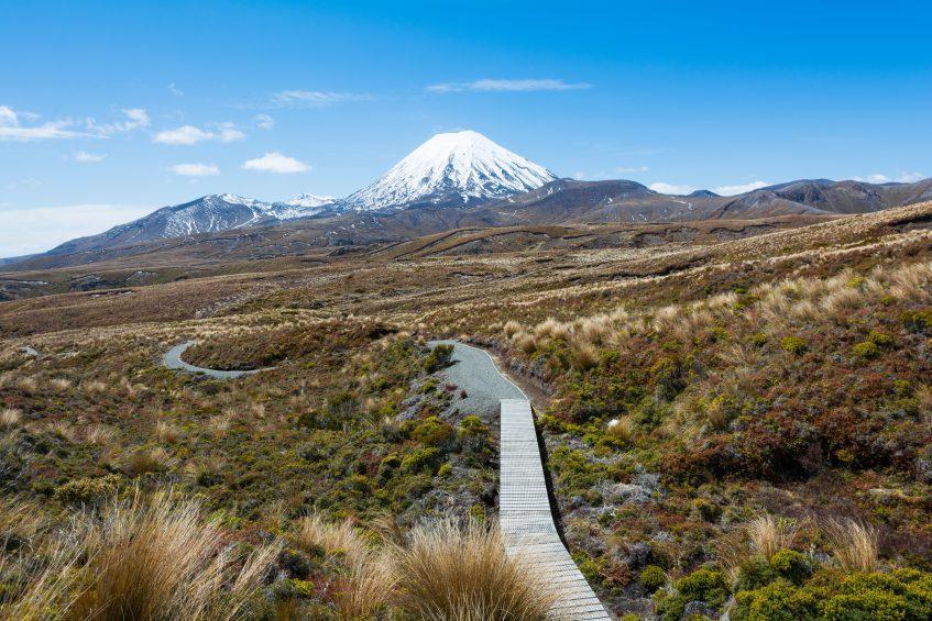 Rotorua - Tongariro