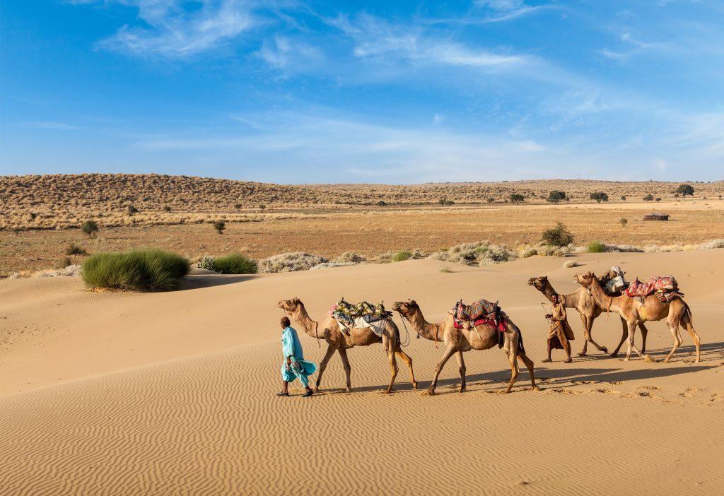 Jaisalmer  Dechu