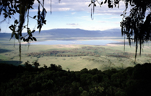 Parc national de Serengeti - Gorges Olduvai - Cratère Ngorongoro