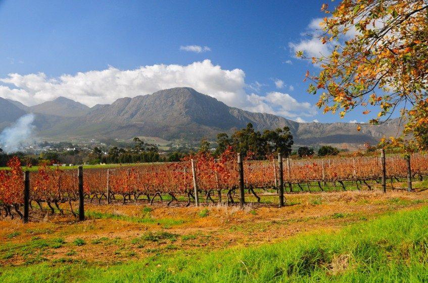 Le Cap - Route des vins - Le Cap
