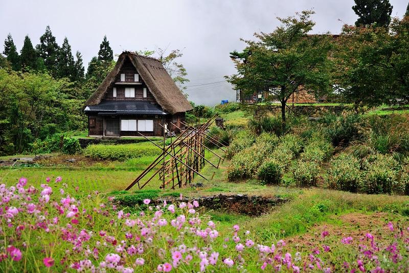 Takayama - Shirakawago - Kanazawa