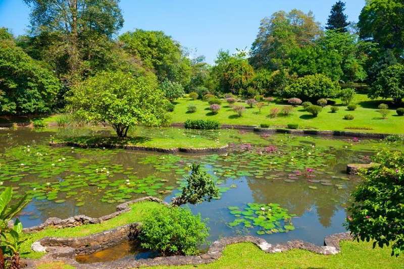 Sigiriya - Matale - Kandy